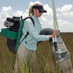 Group leader, undergraduate student Brittany DeLoach McCall, samples insects in the salt marshes as part of the group's research. | Courtesy of Steven Pennings