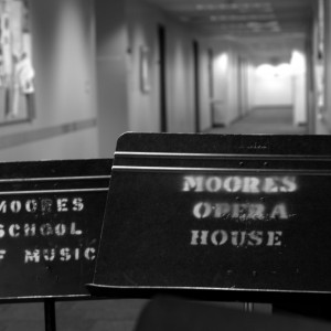 """""""Collage 2012,"""" organized by the Moores School of Music aims to expose the University to concerts and programs that the college offers throughout the year. The event will also highlight solo performers. File photo/The Daily Cougar"""